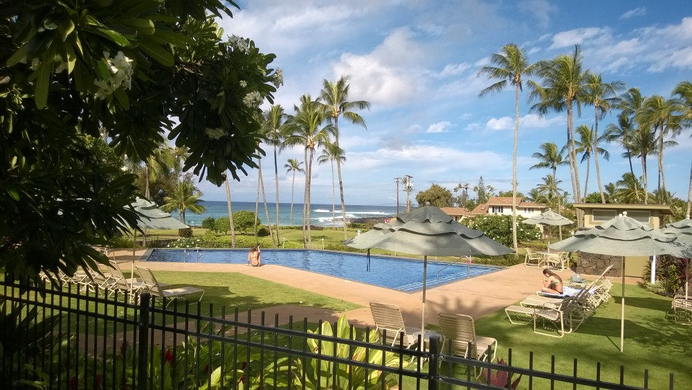 Manualoha Pool Scheme 1